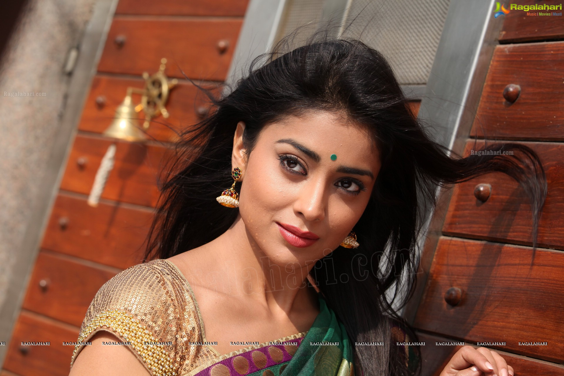 shriya saran (high definition) image 27 | tollywood actor gallery
