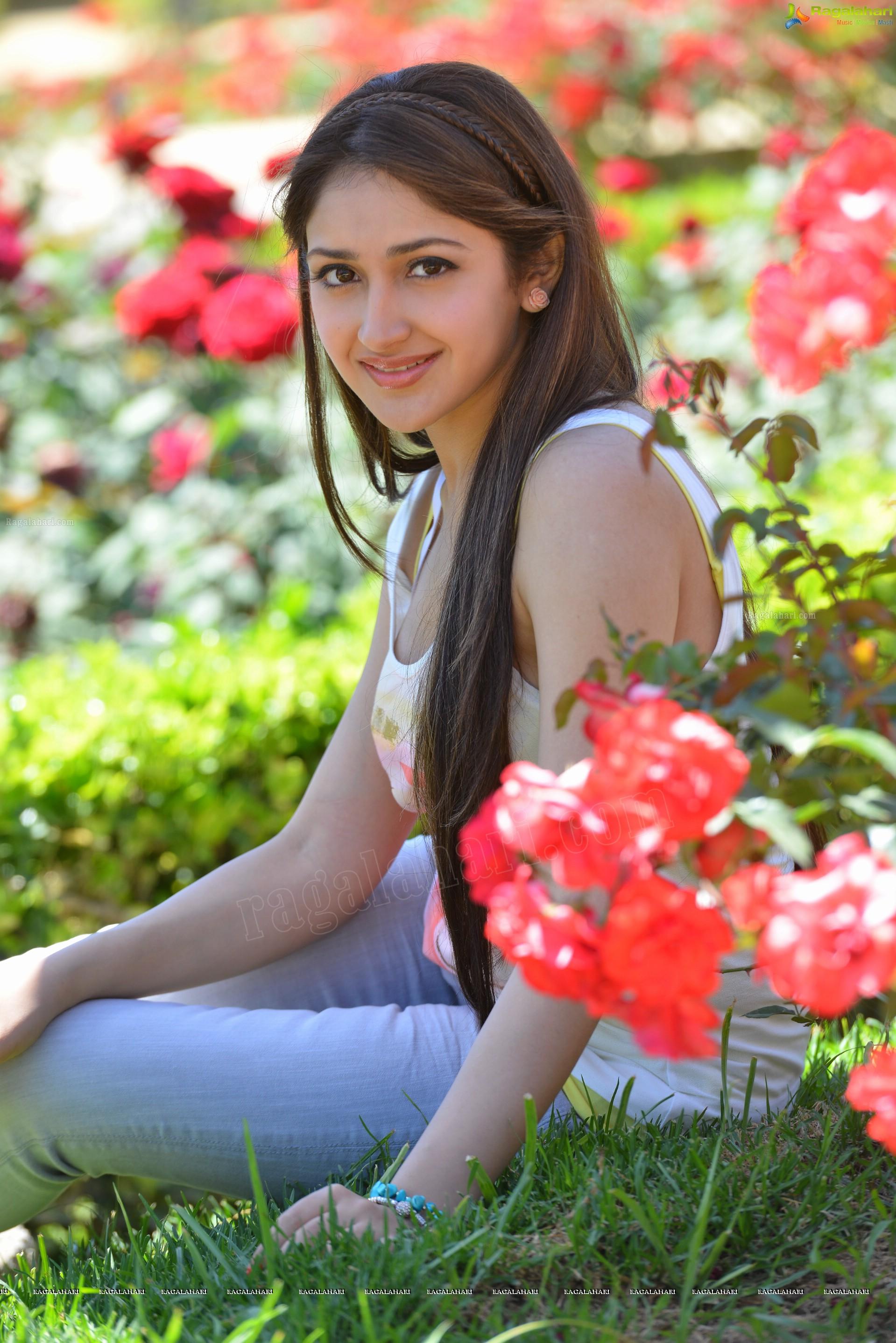 Sayesha Saigal High Definition Image 18 Telugu Actress