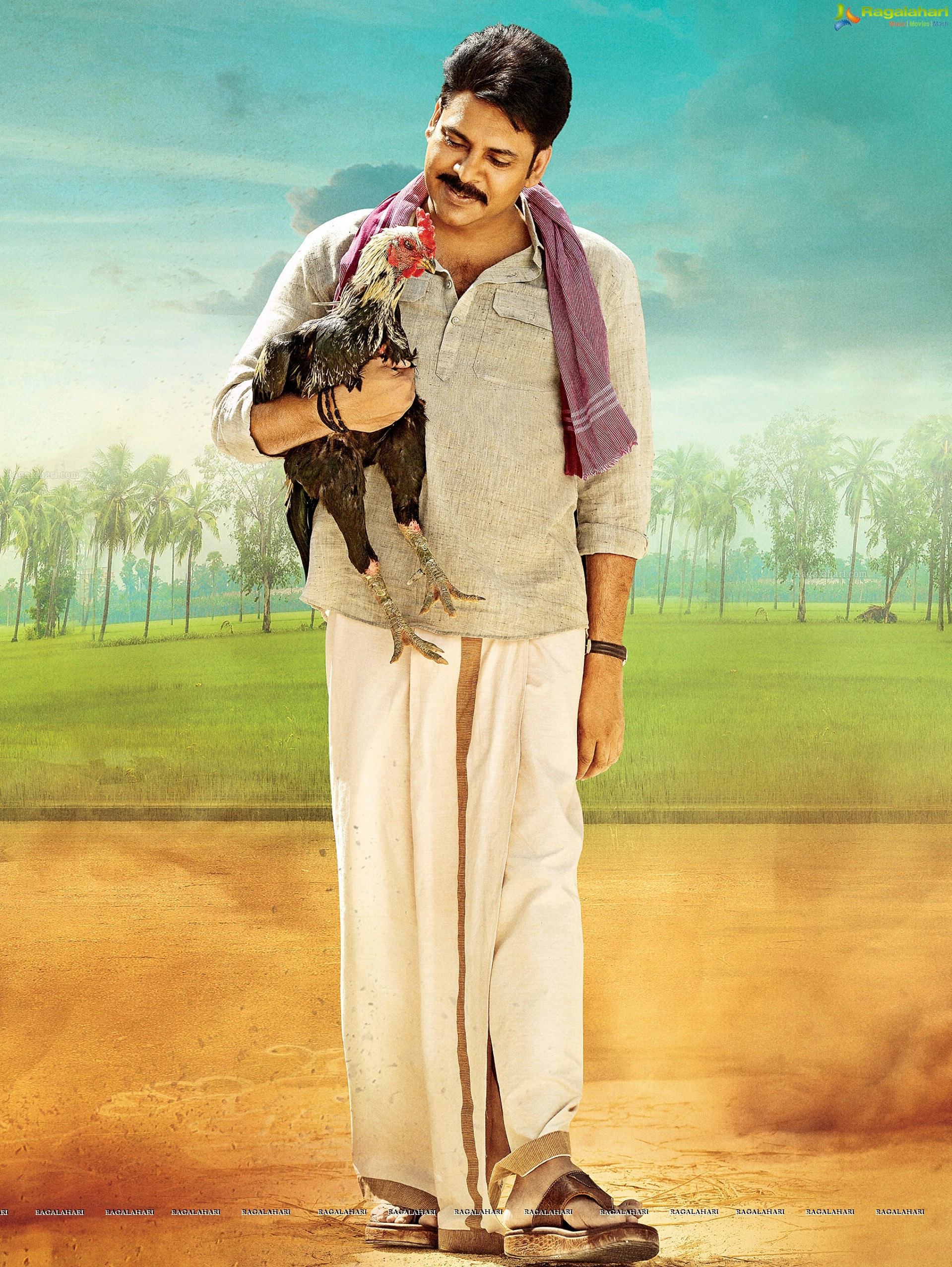 hd photos - pawan kalyan hd stills from katamarayudu