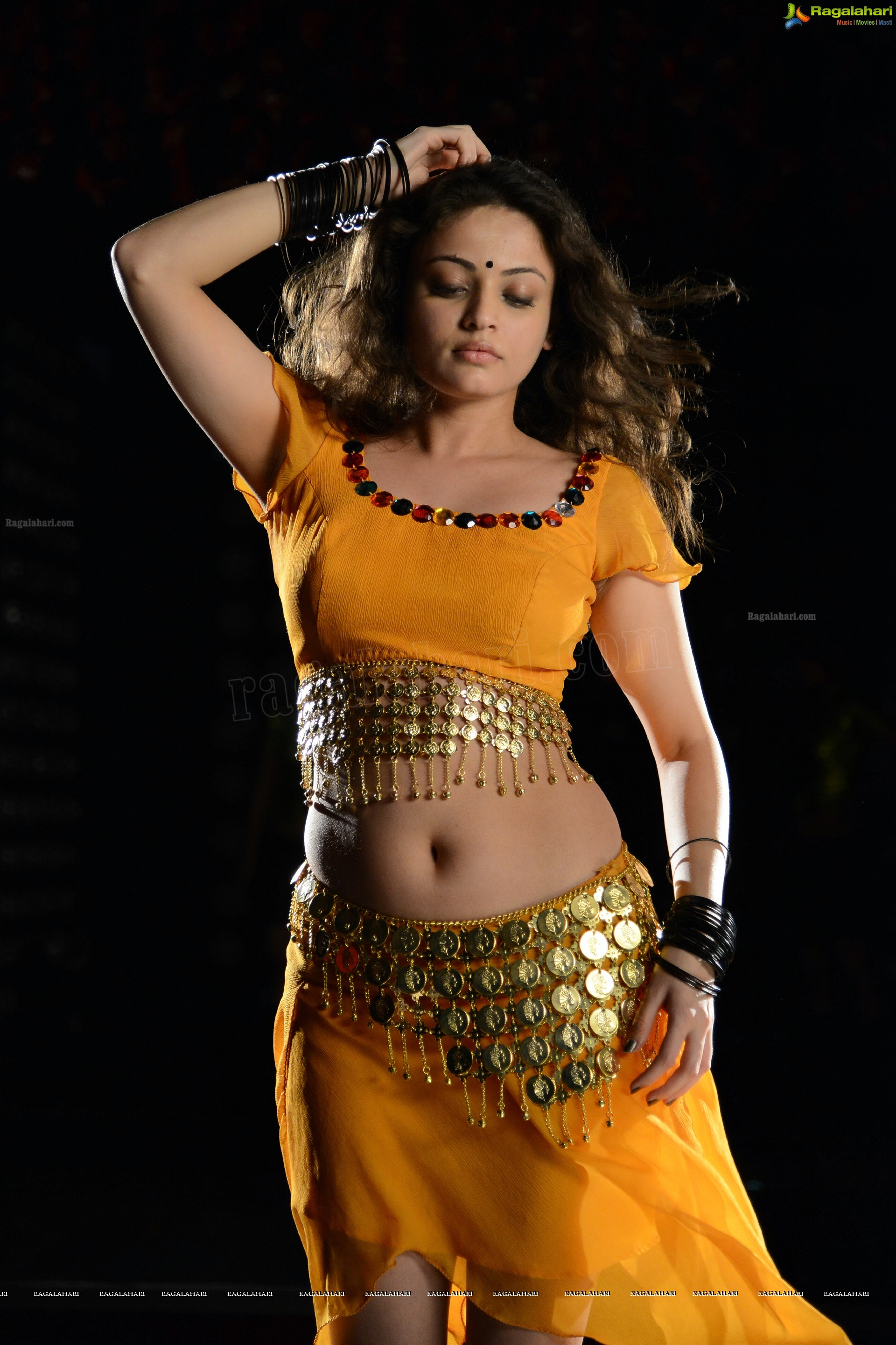 sneha ullal (high definition) image 57 | telugu actress photos