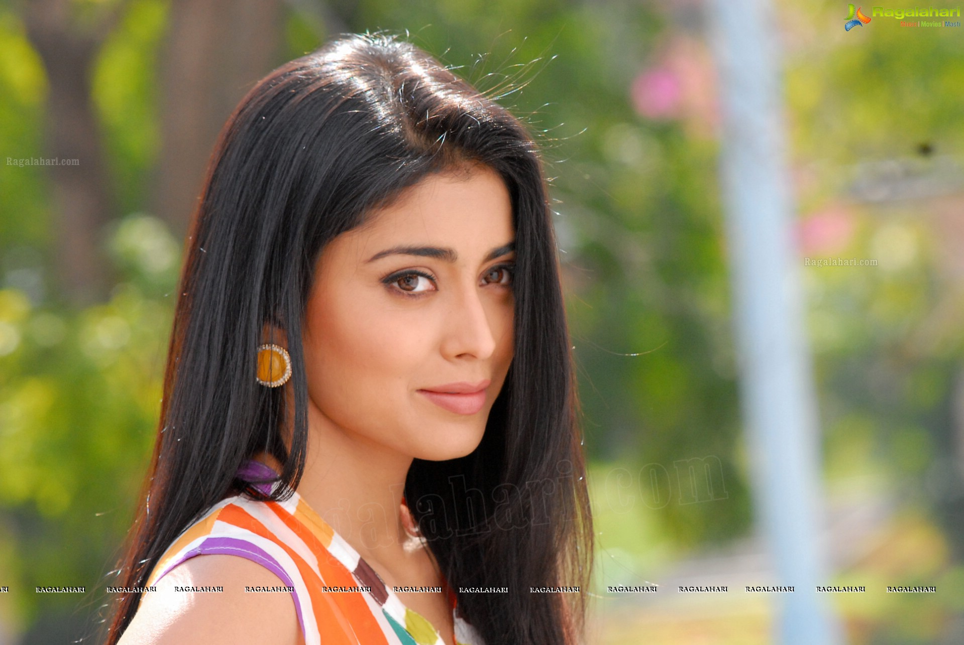 shriya saran (high definition) image 1 | latest bollywood actor
